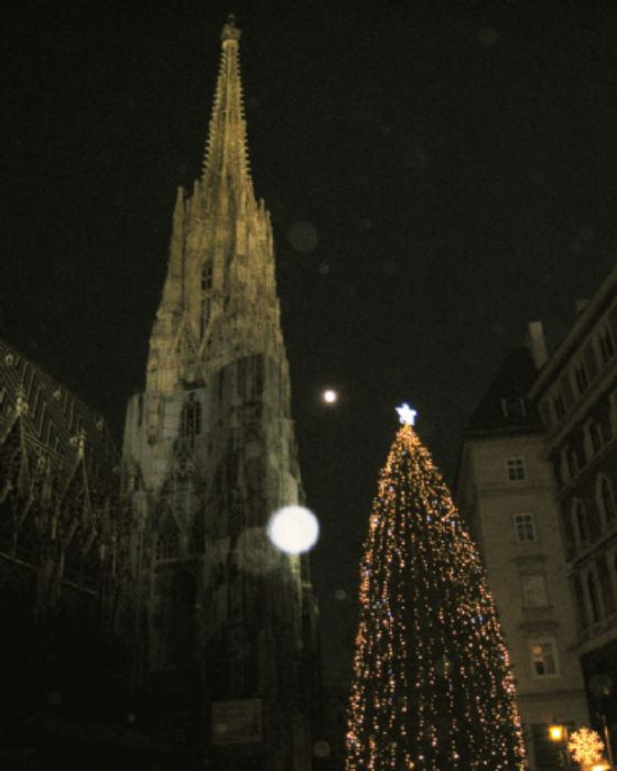 Reflections... spire, tree, moon, star, snowflake...