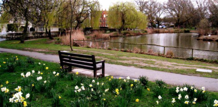 Barnes pond in Spring