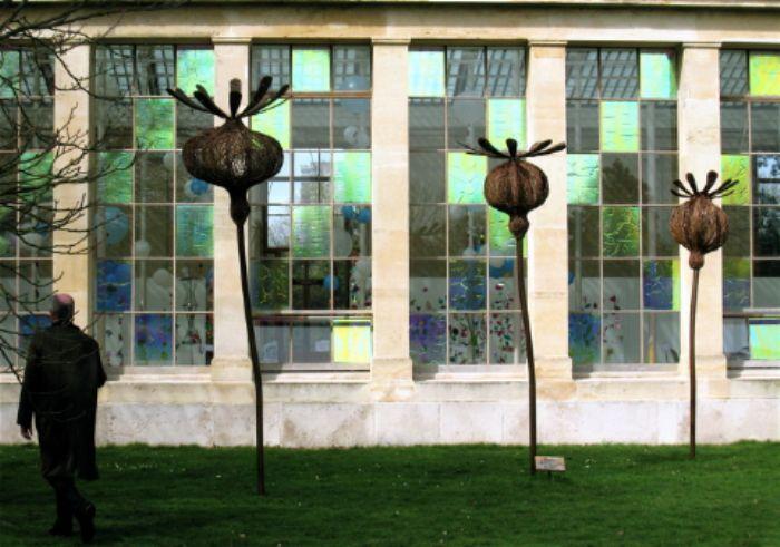 Three giant poppy heads, Kew gardens