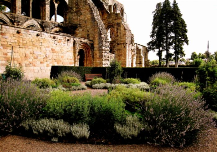 Herb garden at Jedburgh abbey...