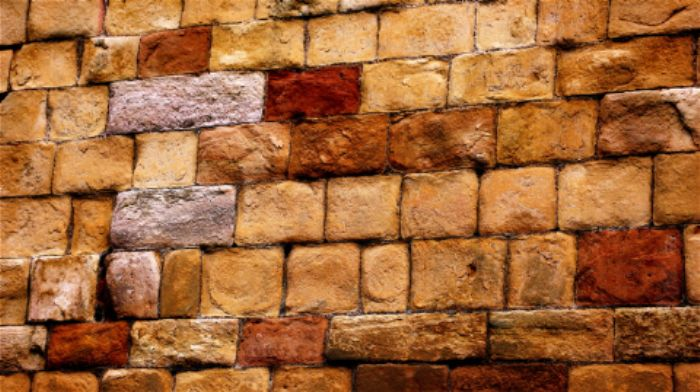 Wall, Jedburgh abbey