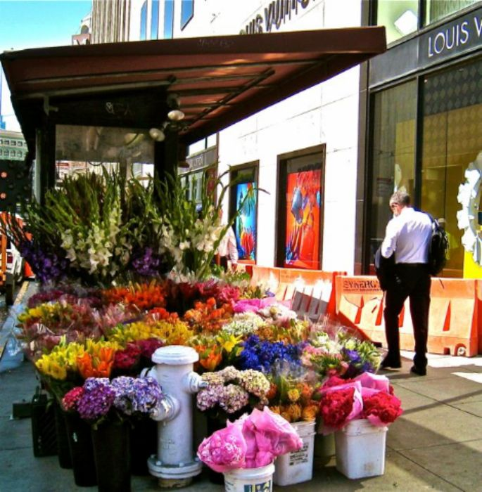 Union Square blooms ...