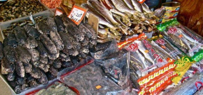 Sea slugs are a great delicacy  -  that  pleasure still awaits me ...