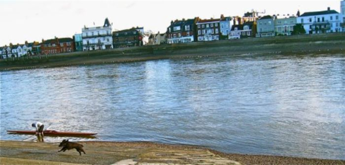 Messing about in boats - down by the river looking at Barnes on New Year's Day ...  with an ecstatic dog ... !