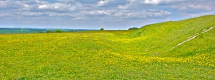 Where I wanted to lie down amongst the buttercups ...