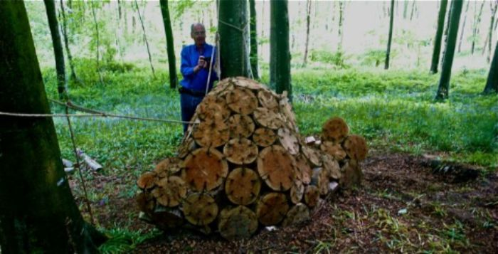 A genius seamstress at work in the forest ...