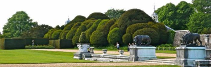 Hedging at Kingston Lacy