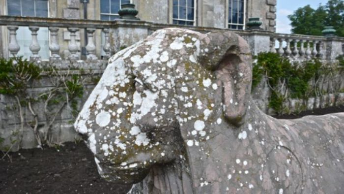 An ancient retainer - Kingston Lacy