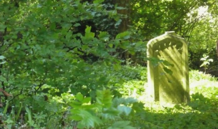 Gravestone bathed in the warmth of the sun ...