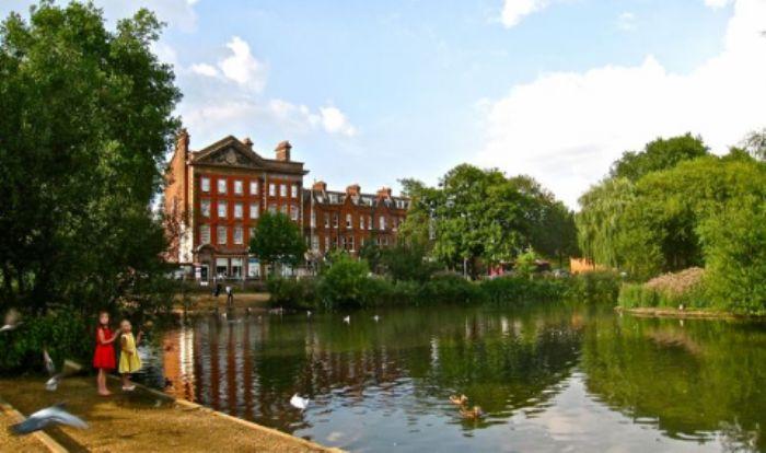 Summer afternoon - Barnes Pond