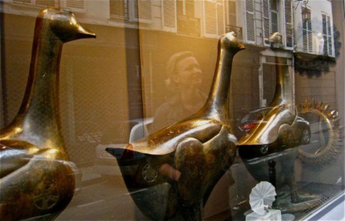 Geese on the Rue de Seine