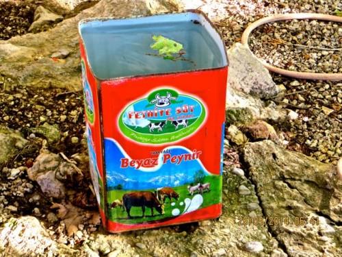 Pinara - a can full of fresh water