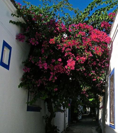 Bodrum - a secret passage