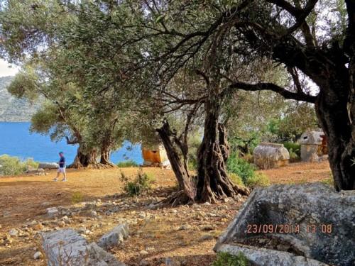 Kaleköy - an ancient landscape