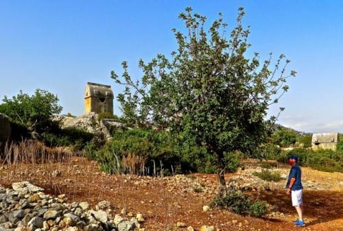 Tomb,asphodel and John - Kaleköy