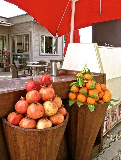 Myra - Oranges and Pomegranates