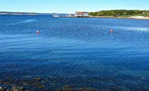 Old boathouses and orange buoys