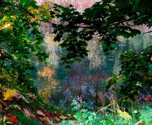 Reservoir colours.  Monet- esque