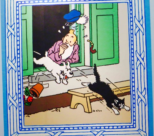 A typical Tintin and Snowy drama ...