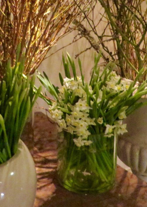 Printemps - birthday flowers