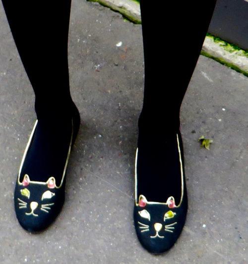 Les chats sauvages rôdent le Boulevard St. Germain ...