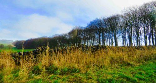 Countryside near Buxton